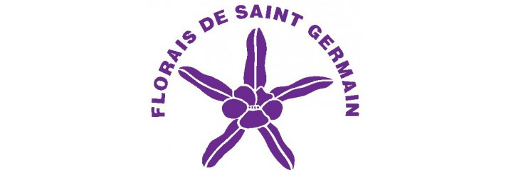 Flores de Saint Germaint